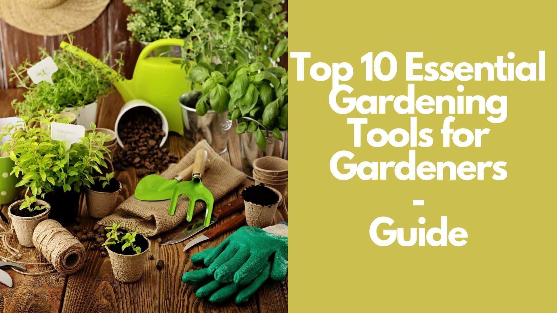 Top 10 Essential Gardening Tools for Gardeners  Guide