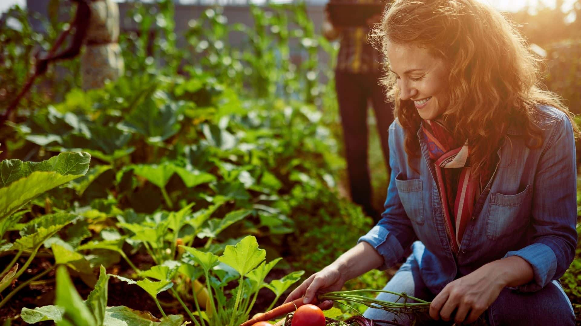 What Are the Most Popular Different Types of Gardening - 12 Ideas to Try