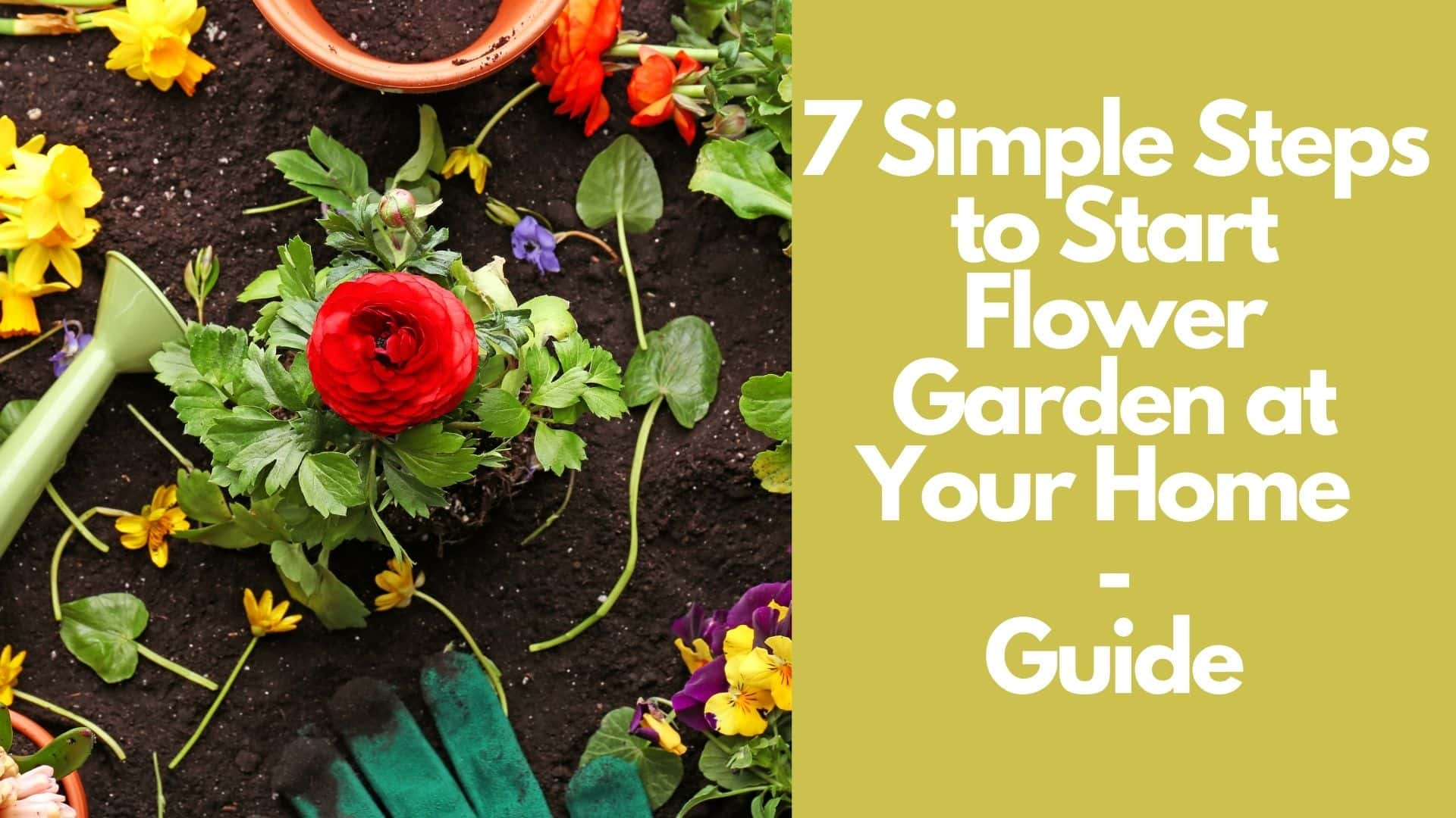 How to Start a Flower Garden: 7 Steps for Beginners | Guide