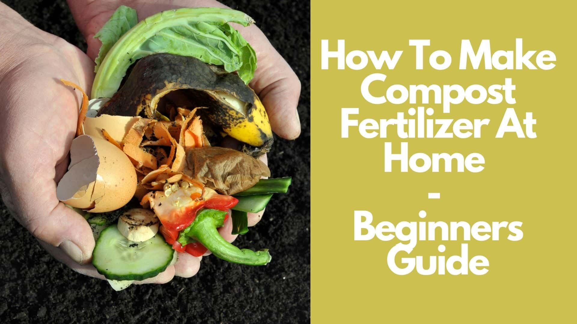 How To Make Compost Fertilizer At Home | Beginners Guide